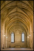 Chapel, Palace of the Popes. Avignon, Provence, France ( color)