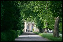 Forested alley and palace, Fontainebleau Palace. France ( color)