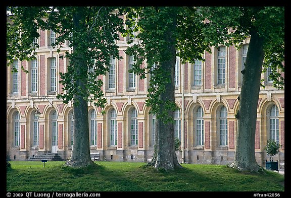 Trees and facade, Fontainebleau Palace. France