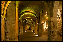 Vaulted lower room, Provins. France (color)