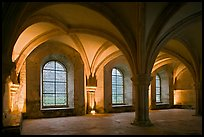 Rib-vaults, monks room, Cistercian Abbey of Fontenay. Burgundy, France ( color)
