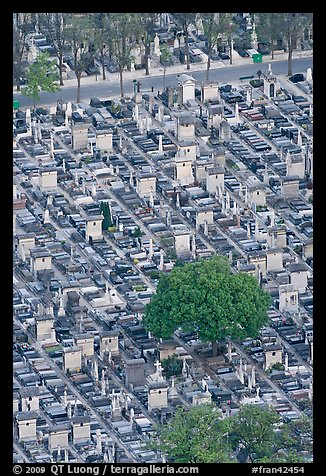 Tombs in Cimetierre du Montparnasse seen from above. Paris, France (color)