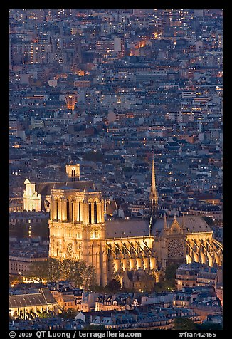 Aerial view of Notre-Dame de Paris Cathedral at night. Paris, France (color)