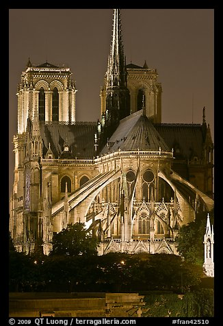 Chevet (head) and buttresses of Notre-Dame by night. Paris, France (color)