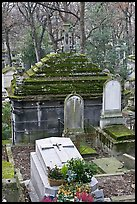 Mossy tombs, Pere Lachaise cemetery. Paris, France