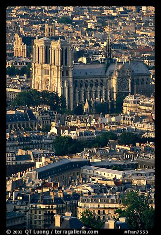 Notre Dame seen from the Montparnasse Tower, late afternoon. Paris, France (color)