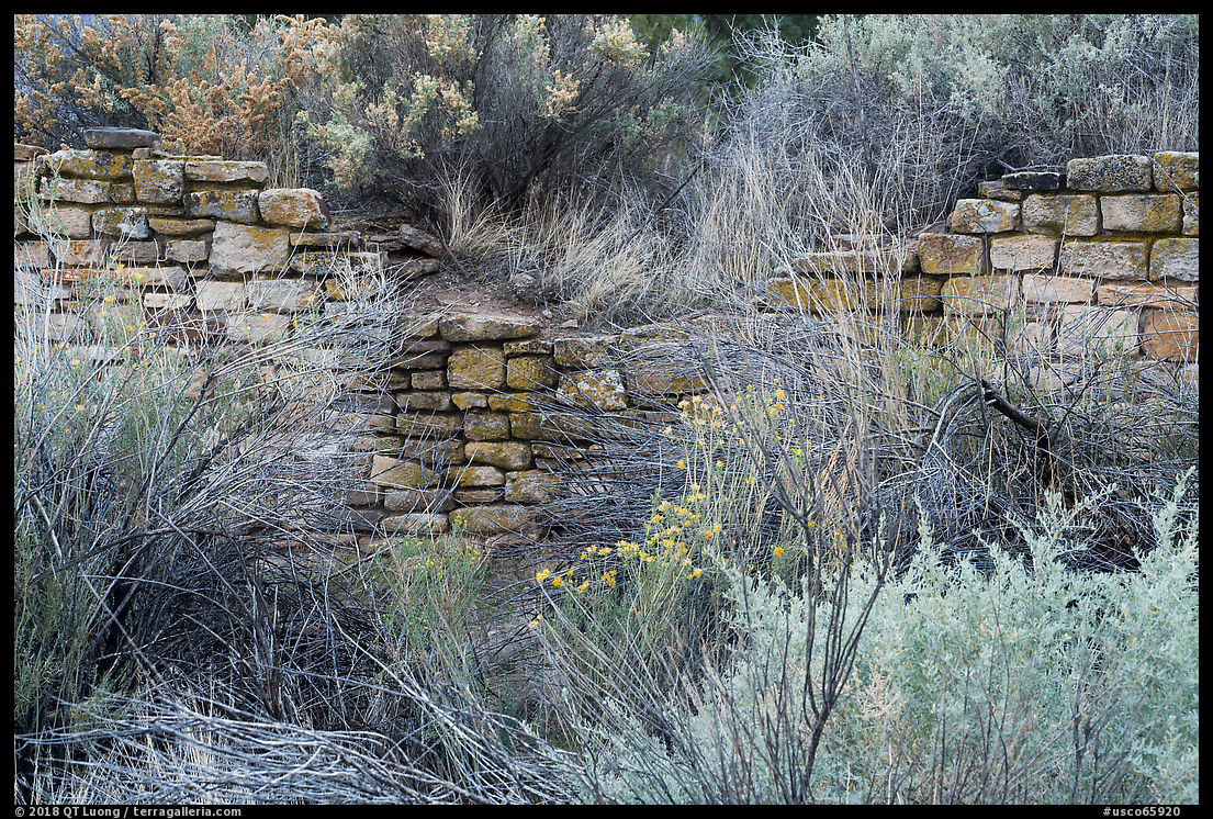 Yucca House: the Worst National Monument? | The Terra Galleria Blog on homolovi state park map, great sand dunes national park map, sangre de cristo mountains map, natchez trace parkway map, yucca house nm, arapaho national recreation area map, rocky mountain national park map, broomfield map, grand canyon national park map, newspaper rock state historic monument map, pecos national historical park map, bryce canyon national park map, leadville map, canyonlands national park map, chaco culture national historical park map, capitol reef national park map, garden of the gods map, san juan national forest map, curecanti national recreation area map,
