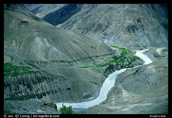 Zanskar River valley with cultivation patches, Zanskar, Jammu and Kashmir. India (color)