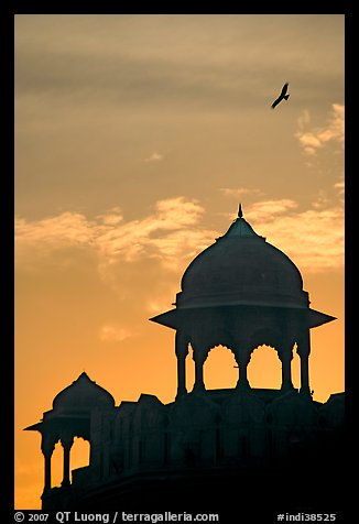 Bird and wall pavilions of Red fort, sunrise. New Delhi, India (color)