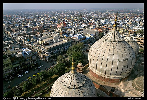 Domes of Jama Masjid mosque and Old Delhi from above. New Delhi, India
