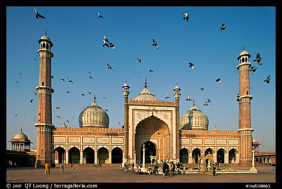 Jama Masjid with pigeons flying. New Delhi, India (color)