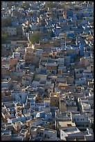 Rooftops of blue houses, seen from above. Jodhpur, Rajasthan, India ( color)