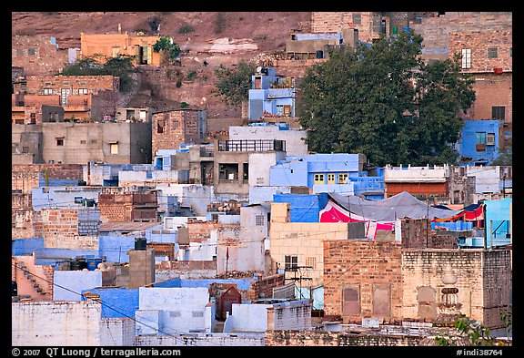 Old quarter houses at dawn. Jodhpur, Rajasthan, India (color)