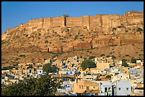 Houses and Mehrangarh Fort, morning. Jodhpur, Rajasthan, India (color)