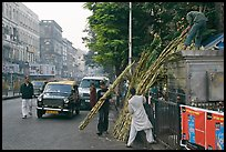 Men loading sugar cane on a street booth. Mumbai, Maharashtra, India (color)