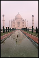 Tomb  reflected in basin, sunrise, Taj Mahal. Agra, Uttar Pradesh, India (color)