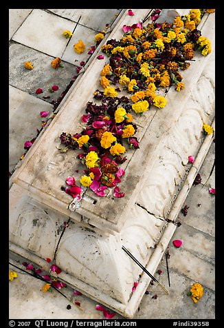 Flowers on tomb, Dargah mosque. Fatehpur Sikri, Uttar Pradesh, India (color)