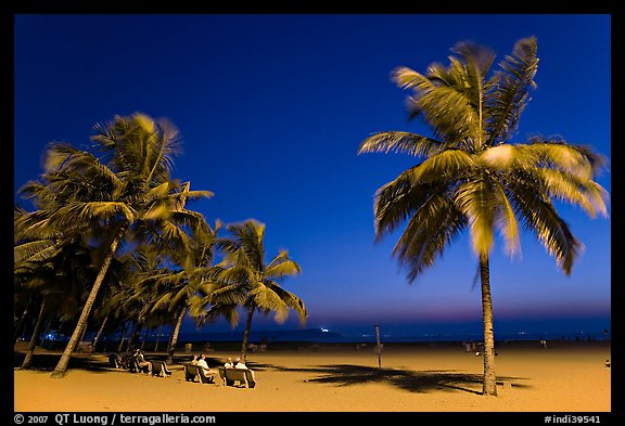 People sitting on bench below palm trees at twilight, Miramar Beach. Goa, India (color)