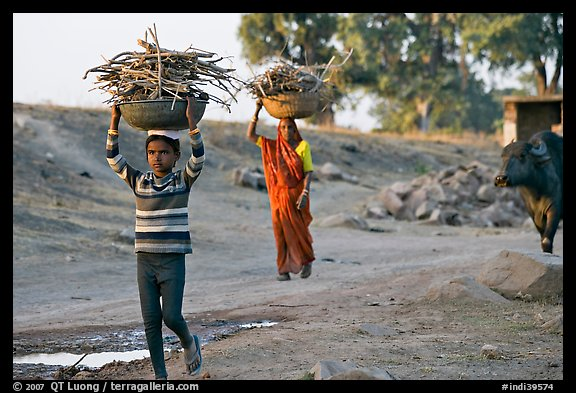 Villagers gathering wood. Khajuraho, Madhya Pradesh, India (color)