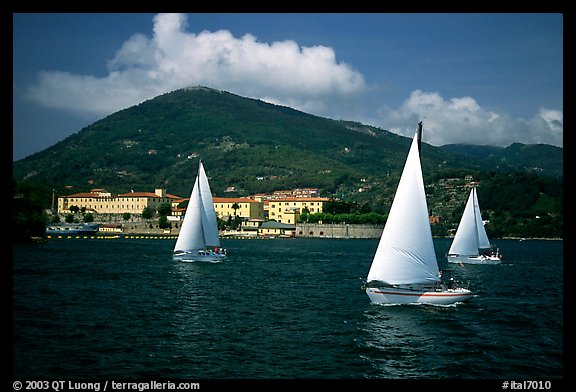 Sailboats cruising, La Spezia. Liguria, Italy (color)