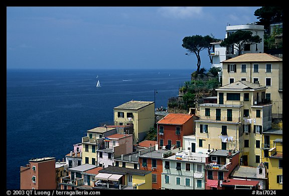 Houses built on the sides of steep hills overlook the Mediterranean, Riomaggiore. Cinque Terre, Liguria, Italy (color)