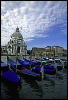 Gondolas, Grand Canal, Santa Maria della Salute church, morning. Venice, Veneto, Italy (color)