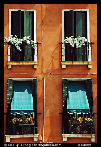Picture Photo Windows Shutters And Flowers Venice