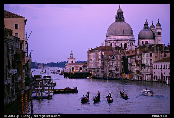 Gondolas, Grand Canal, Santa Maria della Salute church from the Academy Bridge, dusk. Venice, Veneto, Italy (color)