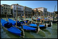 Row of gondolas covered with blue tarps, the Grand Canal. Venice, Veneto, Italy