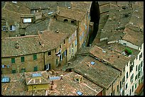 Rooftops seen from Torre del Mangia. Siena, Tuscany, Italy ( color)