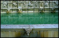 15th century Fonte Gaia (Gay Fountain). Siena, Tuscany, Italy ( color)