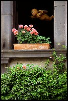 Window with flowers. Orvieto, Umbria (color)