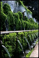 Alley lined with fountains, Villa d'Este. Tivoli, Lazio, Italy (color)