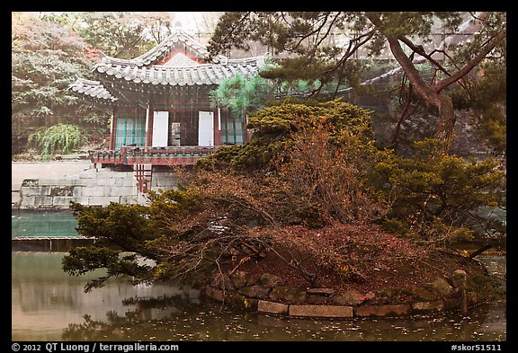 Buyongji, pond, trees, and canvas, Changdeok Palace. Seoul, South Korea (color)