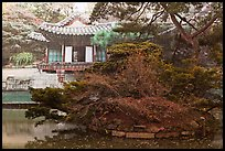 Buyongji, pond, trees, and canvas, Changdeok Palace. Seoul, South Korea ( color)