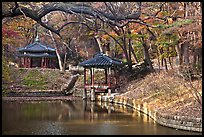 Pond in autumn, Changdeokgung Palace gardens. Seoul, South Korea ( color)