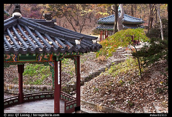 Pavilions in autumn, Changdeok Palace gardens. Seoul, South Korea (color)