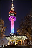 N Seoul Tower at night. Seoul, South Korea ( color)