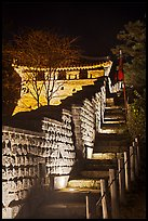Steep section of wall at night, Namchi, Suwon Hwaseong Fortress. South Korea (color)