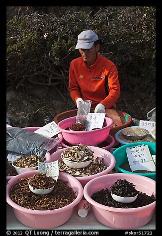 Man selling natural ingredients. South Korea (color)