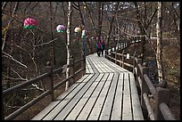 Elevated boardwalk near Haeinsa. South Korea ( color)