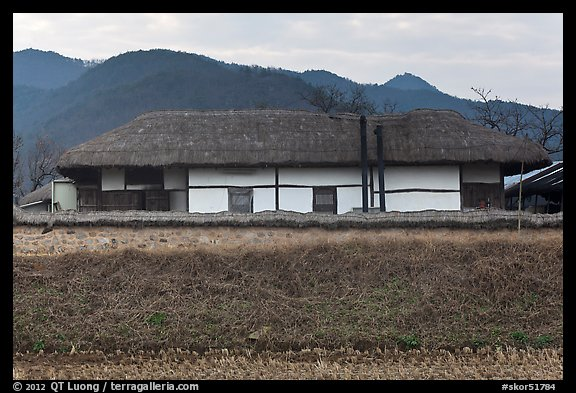 Straw roofed house. Hahoe Folk Village, South Korea (color)