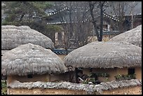 Straw roofing. Hahoe Folk Village, South Korea ( color)