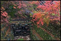 Landscaped creek in autumn, Bulguksa. Gyeongju, South Korea (color)