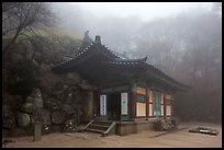 Grotto entrance pavilion in fog, Seokguram. Gyeongju, South Korea (color)