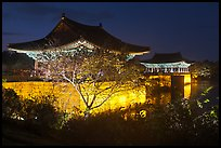 Donggung pavilions at night. Gyeongju, South Korea (color)