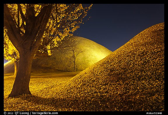 Tumulus and fallen leaves at night. Gyeongju, South Korea (color)