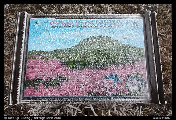 Frosted sign depicting spring landscape, Hallasan. Jeju Island, South Korea (color)