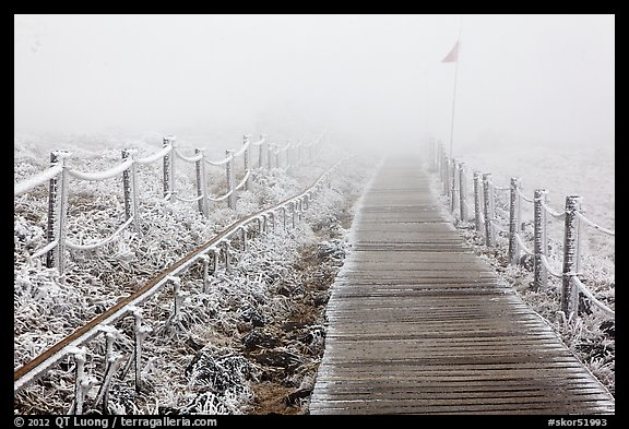 Frozen path and fog, Yeongsil trail, Hallasan. Jeju Island, South Korea (color)