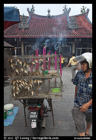 Motorcycle loaded with cage of birds (to be freed) in front of temple. George Town, Penang, Malaysia (color)